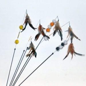 Birdwings-Angeln natur