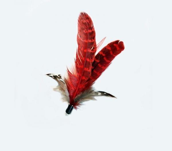 Flattara rot klein