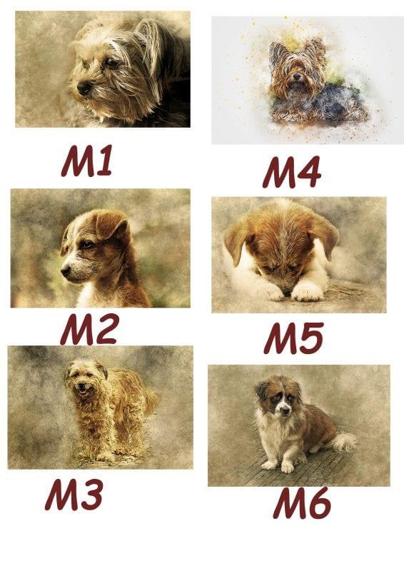 Motiv Hund 1-6
