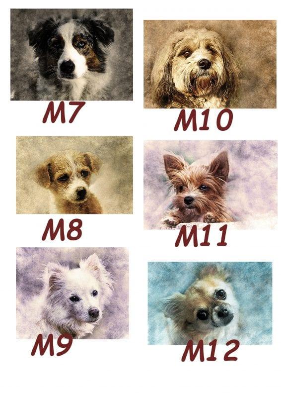 Motiv Hund 7-12